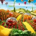 Kaliteli gübre ile <b>toprak hayat buluyor</b>